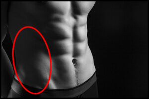 腹斜筋の写真