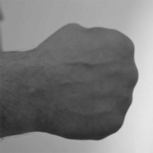 システマの達人・ヴラディミア・ヴァシリエフの拳