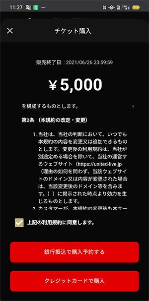 RIZIN(ライジン)ライブ配信チケット購入をするところ
