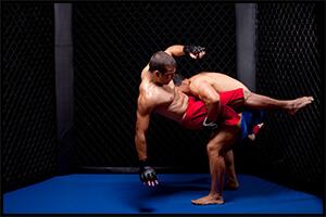 総合格闘技(MMA)で試合をしているところ