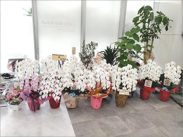 BEYOND(ビヨンド)小倉店の内観・新装開店で花がいっぱい