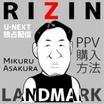 RIZIN LANDMARK PPV購入方法