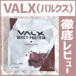 VALX(バルクス)ホエイプロテインチョコレート風味の徹底レビュー